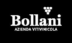 logo azienda vitivinicola Bollani